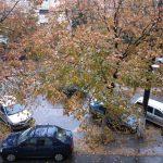 ploua si cad frunzele toamna