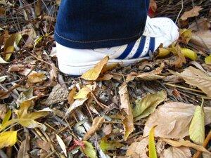 adidas toamna frunze imagine
