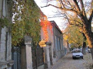 soare toamna frunze ghirlande fotografie