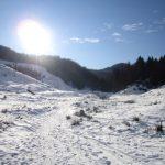 peisaj iarna 2011 romania