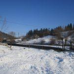 pesaj de iarna imagini