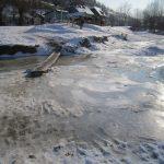 parau iarna 2012