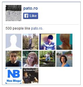 500 like-uri pato.ro
